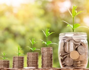 Finance aekonomika - poradenství prorodinné firmy